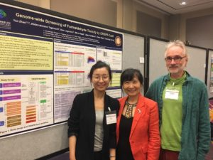 Trainee Yun Zhao with Luoping Zhang and Chris Vulpe (former Berkeley SRP PI)